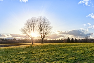 Le soleil, source d'énergie inépuisable